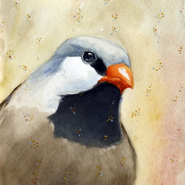 Maggie Hurley Art Prints - Embelished Birds on Paper