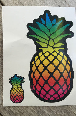 Rainbow Pineapple Set