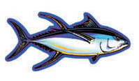 yellowfin tuna (ahi) decal