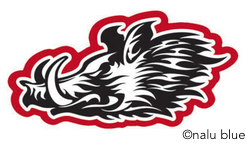 black and red wild boar head decal