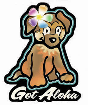 cute brown dog with rainbow flower and got aloha