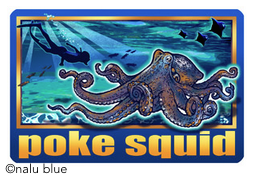 poke squid decal