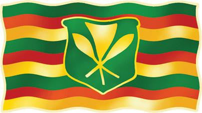 rasta hawaiian flag