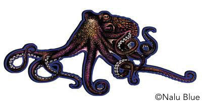 tako octopus decal