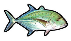 ulua decal