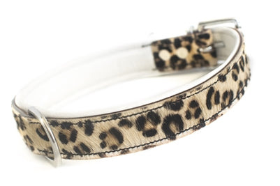 SPOTTED CHEETAH PRINT DOG COLLAR