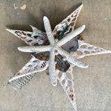 Abalone Shell Tree Topper Star