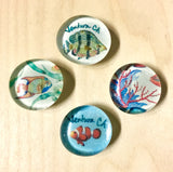 Sea Life Glass Magnet