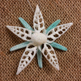 Starfish Shell Star Ornament