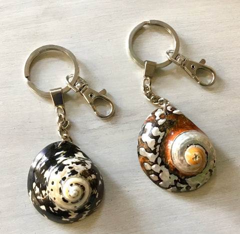 Pacific Turbo Shell Keychain