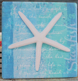 White Starfish Coaster