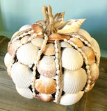 Seashell Harvest Pumpkin