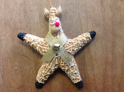 Rudolph Starfish Ornament