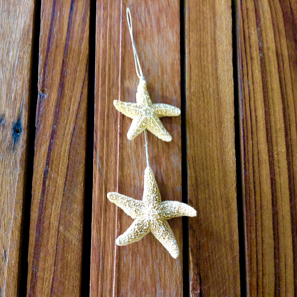 Double Seastar Ornament