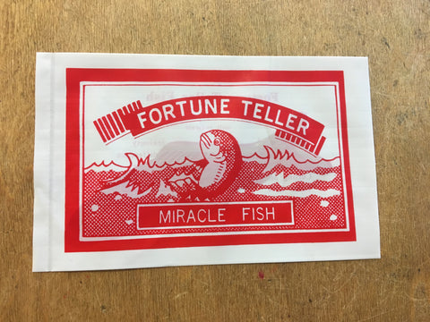 Fortune Fish Toy