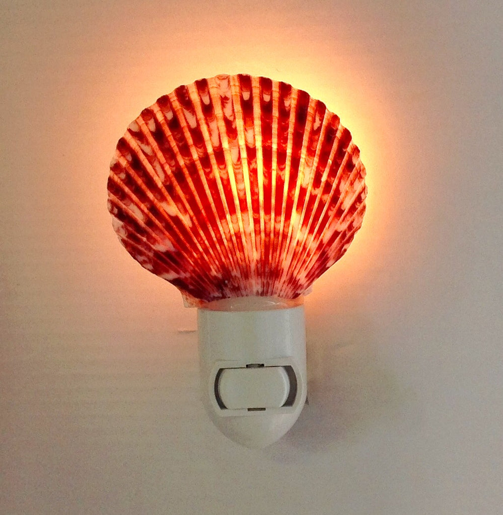 Scallop Shell Nightlight