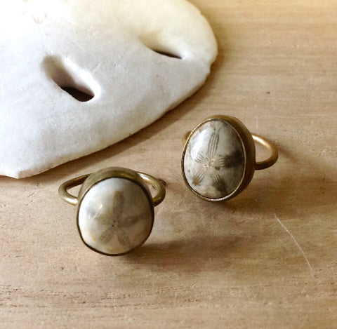 Fossil Sand Dollar Ring