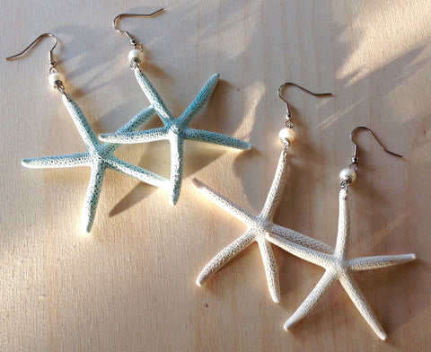 Real Starfish Earrings