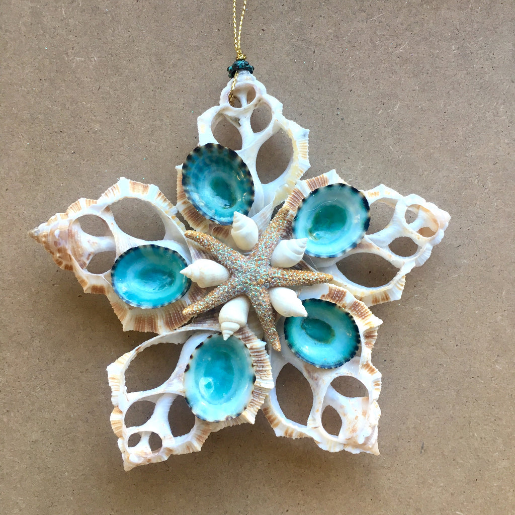 Blue Limpet Star Ornament