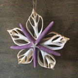 Purple Star Shell Ornament