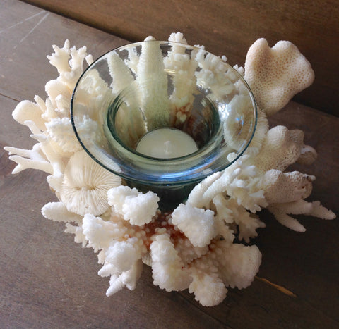 Coral Sculpture Candle Holder