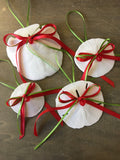 Sand Dollar Bow Ornament
