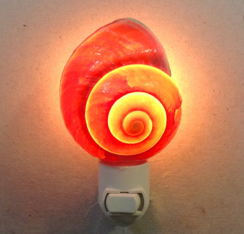 Snail Shell Nightlight