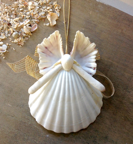 Butterfly  Seashell Angel