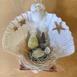 Starry Seashell Manger Ornament