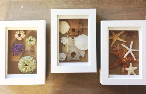 Shadow Box Treasures