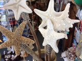 Starfish Tree Toppers