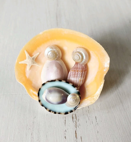 Seashell Nativity Magnet Crafting Box