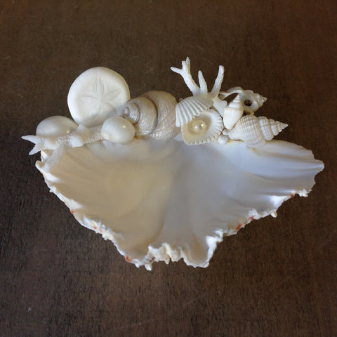 Seashell Ring Dish