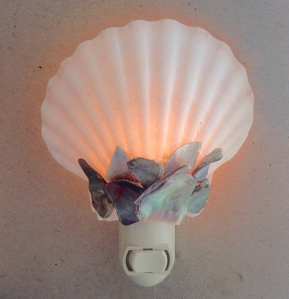 White Pecten Abalone Shell Nightlight