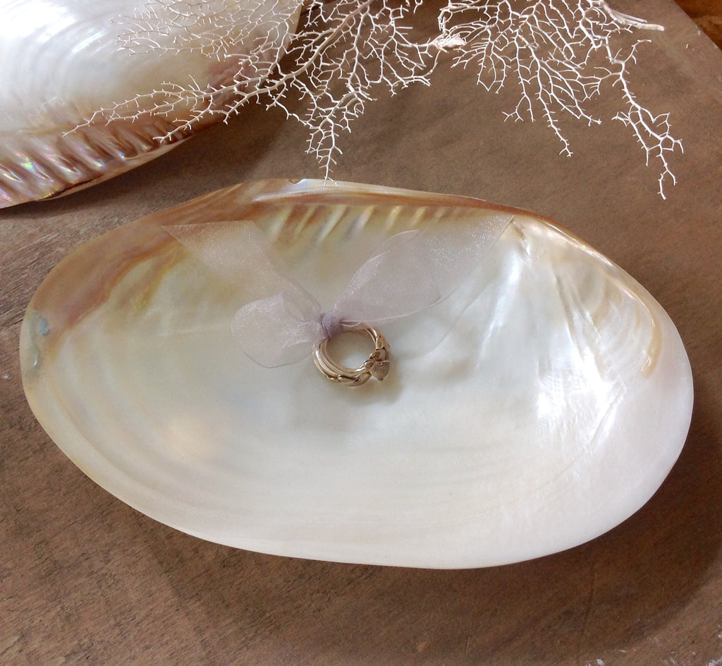 "Ringbear Seashell Wedding ""Pillow"""