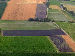 Patchwork of Lavender Fields over Roussillon Provence France