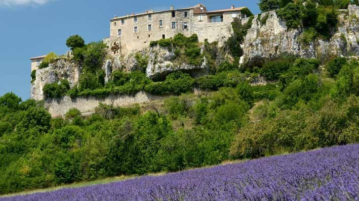 Sault France Village and Lavender Fields