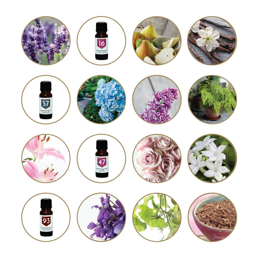 Floral Scented Home Fragrance Diffuser Oils Gift Set - A C D C