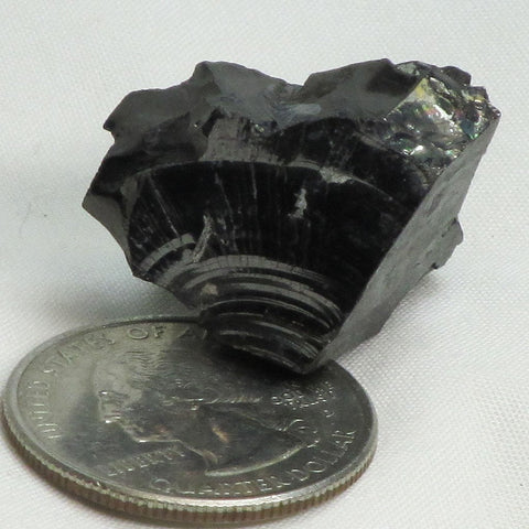 Elite Silver or Noble Shungite from Russia (Shipped from USA)