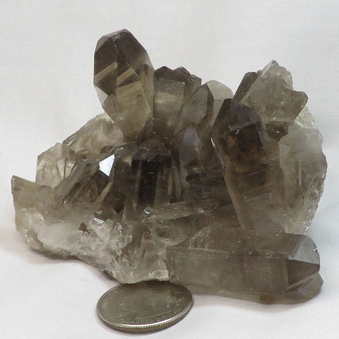 Smoky Quartz Crystal Cluster with Time-Link Activations from Brazil