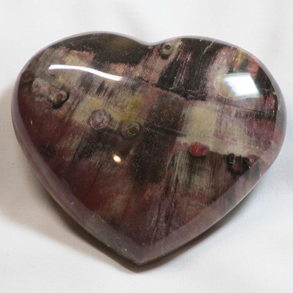 Polished Petrified Wood Heart
