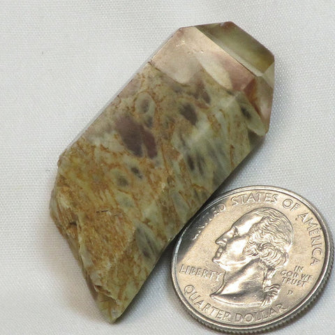 Rare Polished Angel Wing Phantom Quartz Crystal Tabby Point
