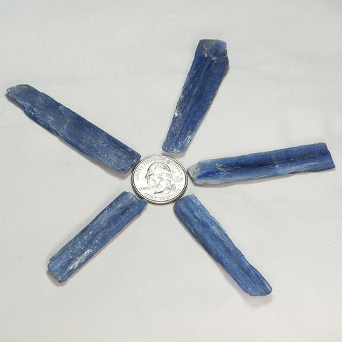 5 Gemmy Blue Kyanite Blades from Brazil | Blue Moon Crystals