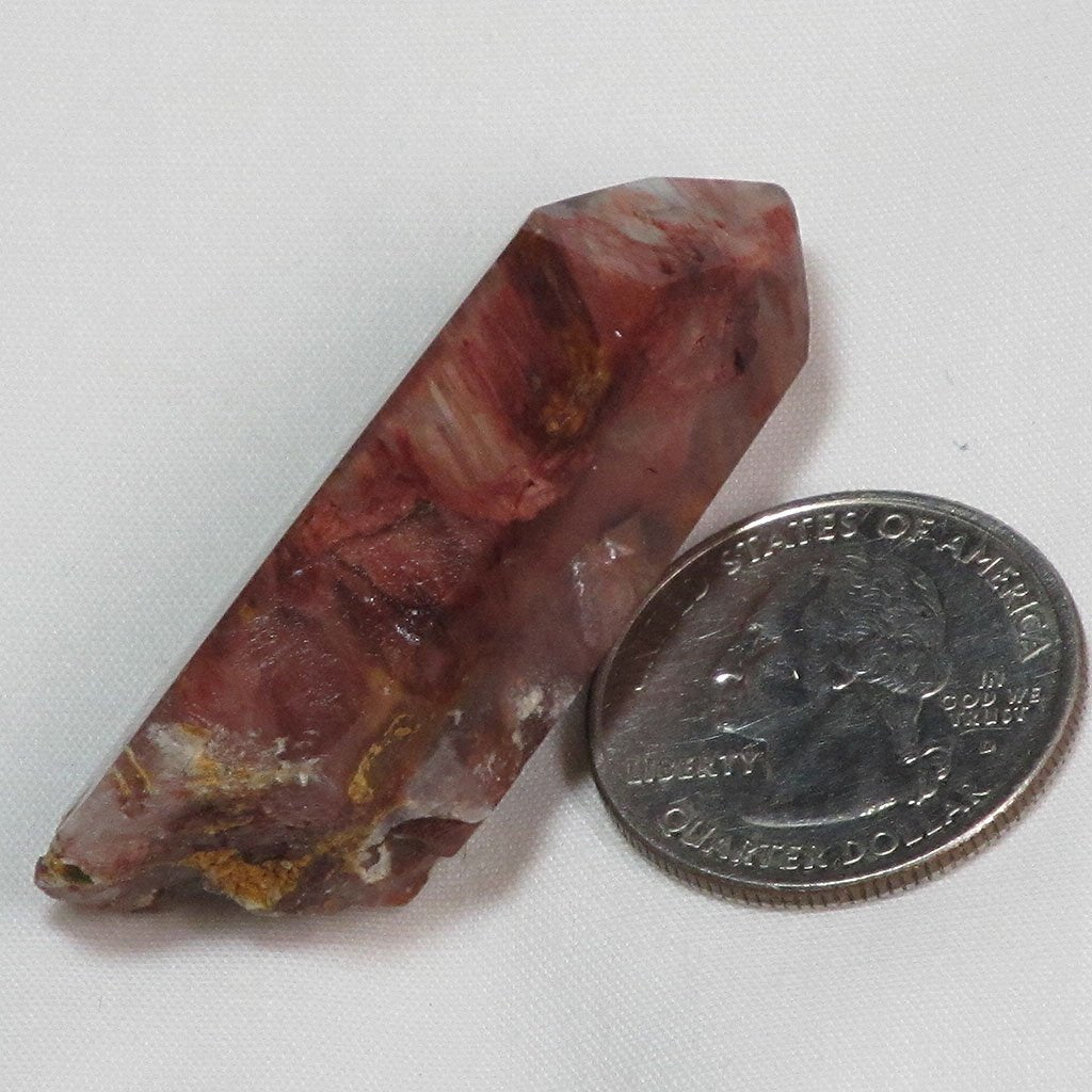 Rare Amphibole Angel Wing Phantom Quartz Crystal Point