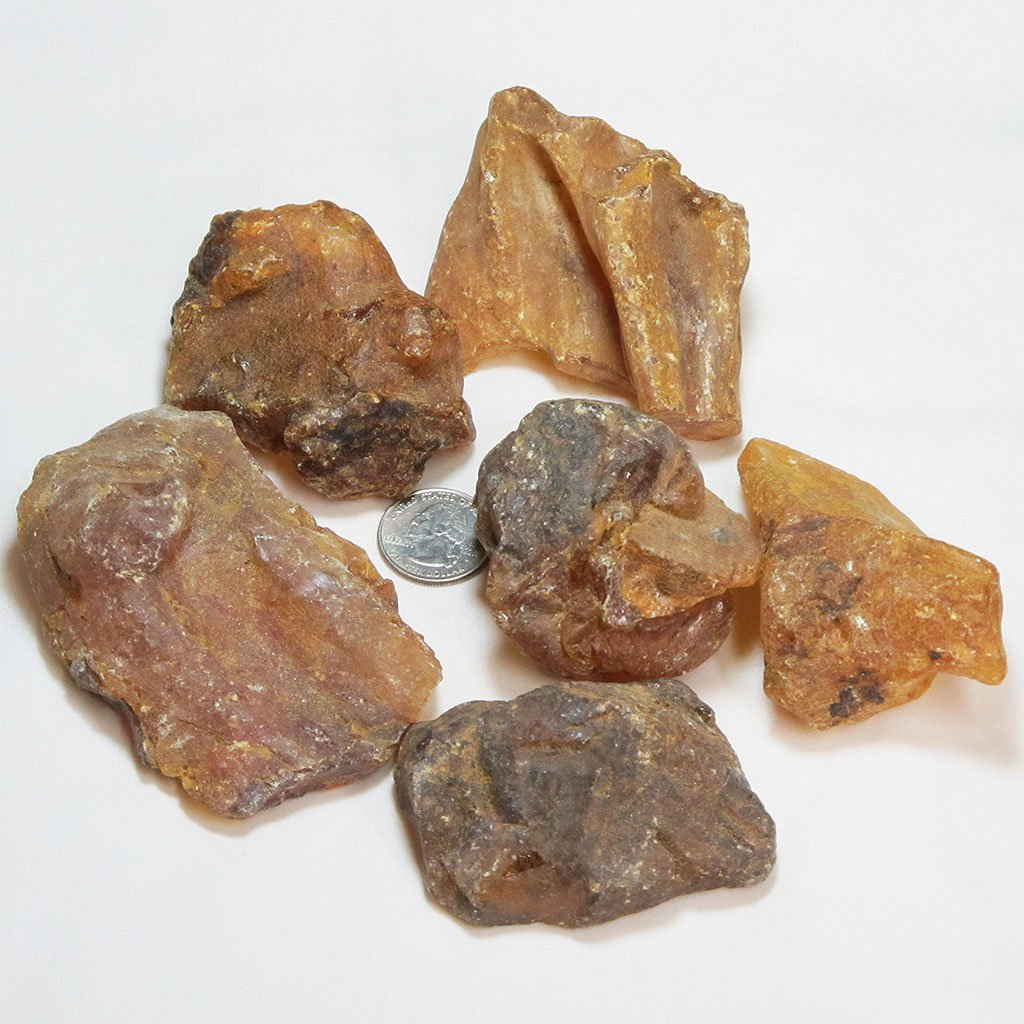 6 Copal Amber Pieces from Madagascar | Blue Moon Crystals
