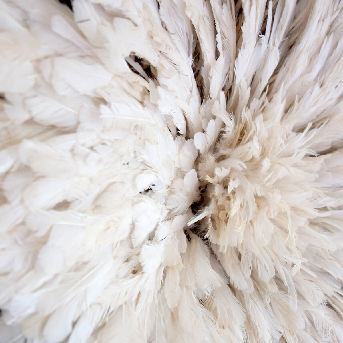 Detail of the feathers inside an Authentic African Juju hat in creamy white natural feathers