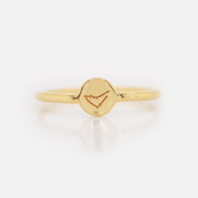 Anillo Zodiac Sign