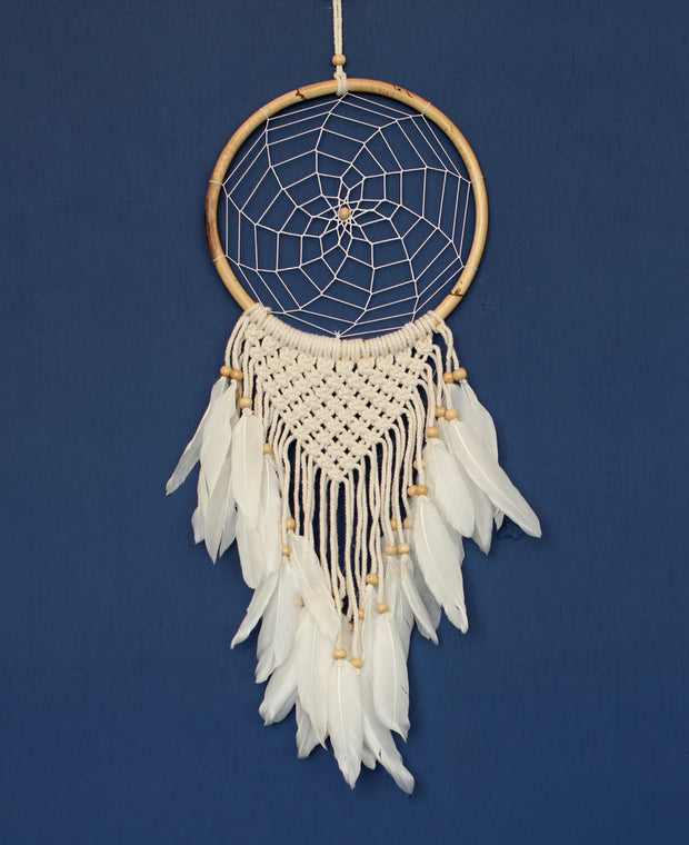 Feathers Dreamcatcher