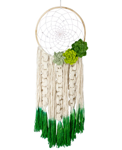 Handmade Succulent Dreamcatcher, Fairtrade