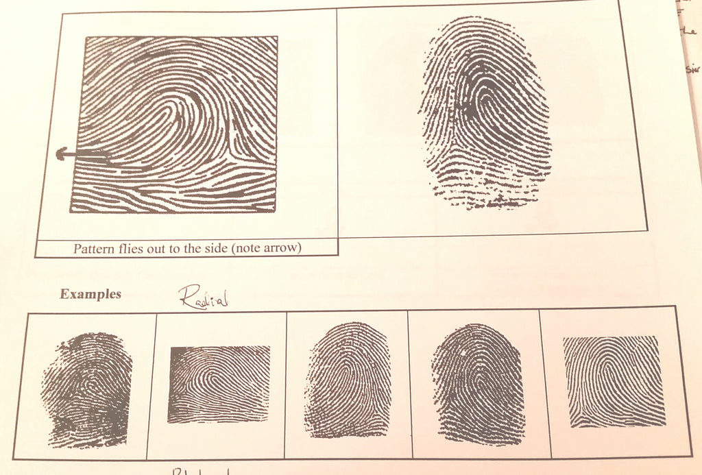 "Hand Analysis: ""Learning Your Life Purpose Through Your Fingerprints"" with Lynn Jordan"